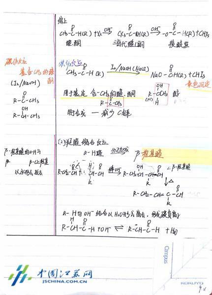扬网络霸巧用5R笔记法大学初中成长艺术我的笔记故事中走红图片
