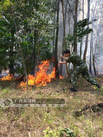 在北海市铁山港区营盘镇鹿塘村委石牛岭村树林内有大火.