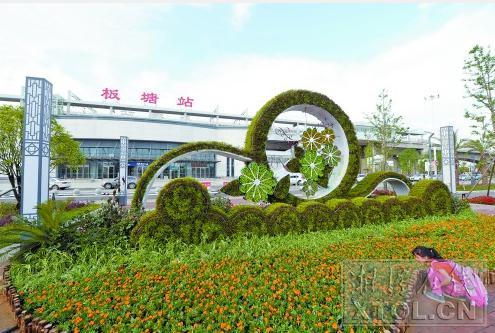 壁纸 成片种植 风景 花墙 景观 墙 植物 种植基地 桌面 495_333