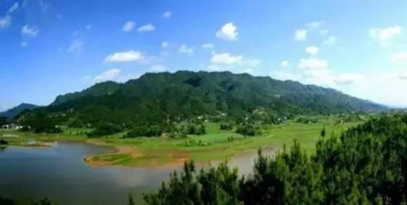 玉龙山森林公园. 图片来源于网络