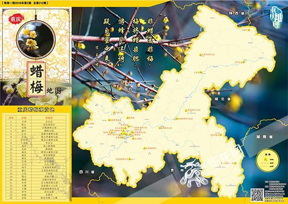 北碚静观蜡梅 静观镇的蜡梅种植历史已有500多年,是全国三大蜡梅种植基地之一,被誉为中国蜡梅之乡和中国花木之乡,整个蜡梅基地大约有2万亩,以万全和素心两基地的素心蜡梅最为出名。静观镇每年在蜡梅盛开之时都会举行盛大的蜡梅文化节,除了观赏蜡梅,还能在此品尝蜡梅花茶、蜡梅花酒、蜡梅面等衍生产品,大饱眼福的同时一饱口福。 渝北园博园 园博园的蜡梅主要聚于西部园区,在2公里左右长的园区道路旁共种植有上千株蜡梅,成为了冬季园博园最富生机的景观。此时正值蜡梅争相开放之际,满树靓丽的黄色花瓣,空气中也弥漫着沁人心脾