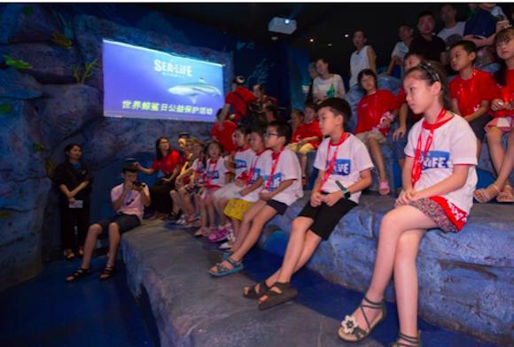 """重庆海洋探索中心举办公益活动""""保护海洋之尊"""" 呼吁拒"""