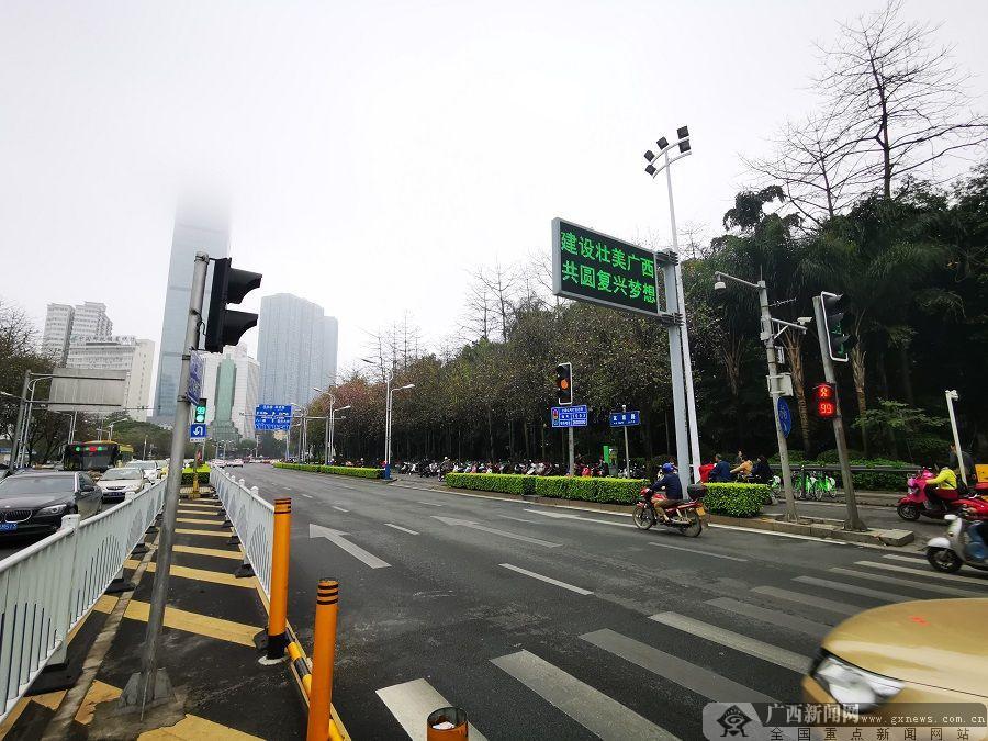 """柳州街头紫荆花初放 为""""壮族三月三""""增添亮色"""