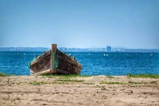 如果看够了城市的高楼大厦,厌倦了平日的生活,别忘了在威海这座宜居城市的郊区,有着这样一个世外桃源。  东楮岛村,这是一个只有180户村民三面环海的小渔村,拥有7.5公里长的海岸线,5公里长天然优质沙滩,被评为中国十大最美乡村之称。  古朴的建筑;浓郁的渔家风情、悠久的历史文化;绿树环绕、曲径通幽这些具有胶东特色富有人情感的海草房,它虽然饱受风雨的侵蚀,但却依然保持着淳朴和质美,也曾经承载着人间的喜、怒、哀、乐,它既给了居住者温暖,同时也是历史变迁的见证。