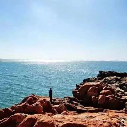玩沙,看海,摸白鲸,带你解锁青岛游玩新姿势